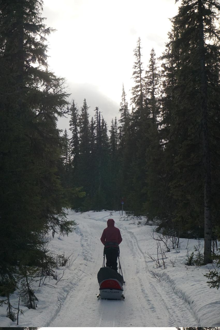 Jämtland: Einsamkeit und Wintersturm images/jaemtland/01.jpg