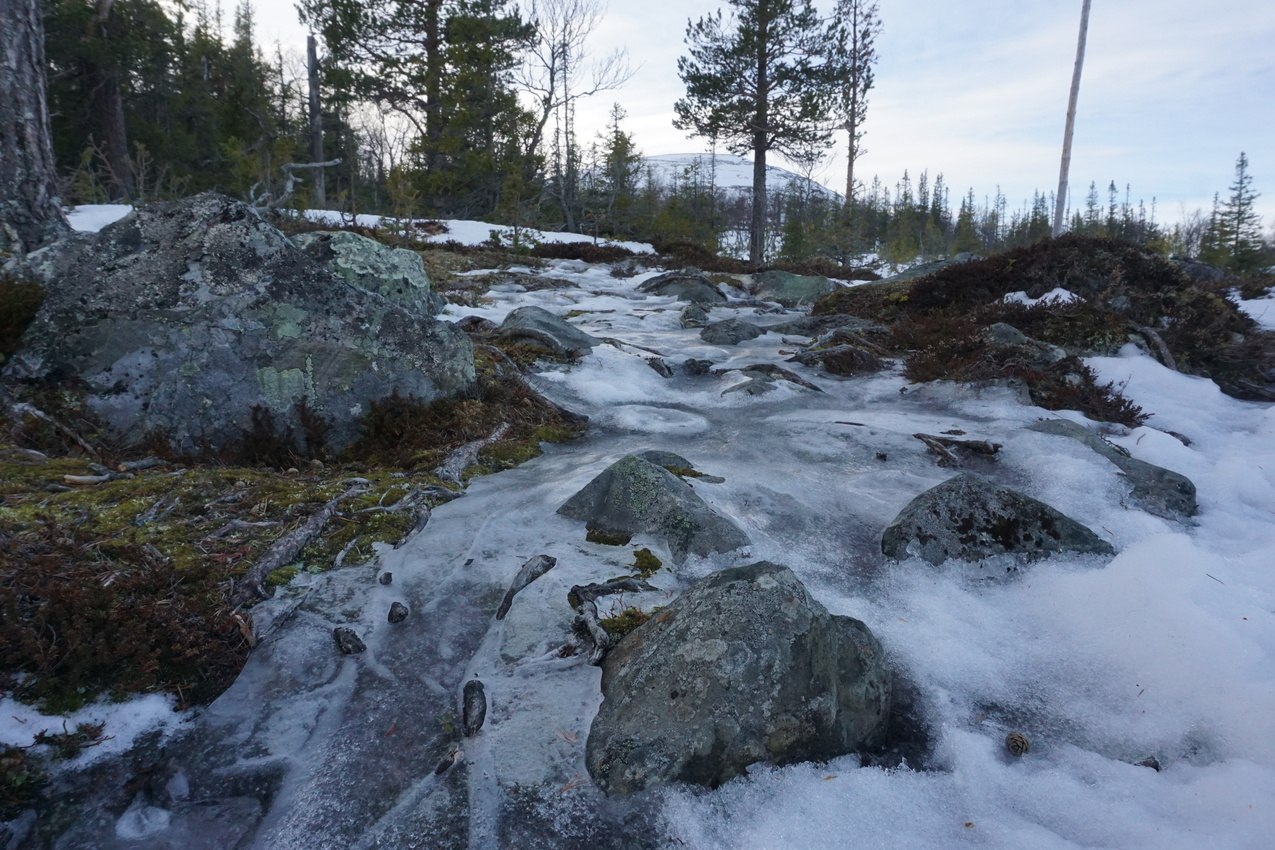 Jämtland: Einsamkeit und Wintersturm images/jaemtland/10.jpg