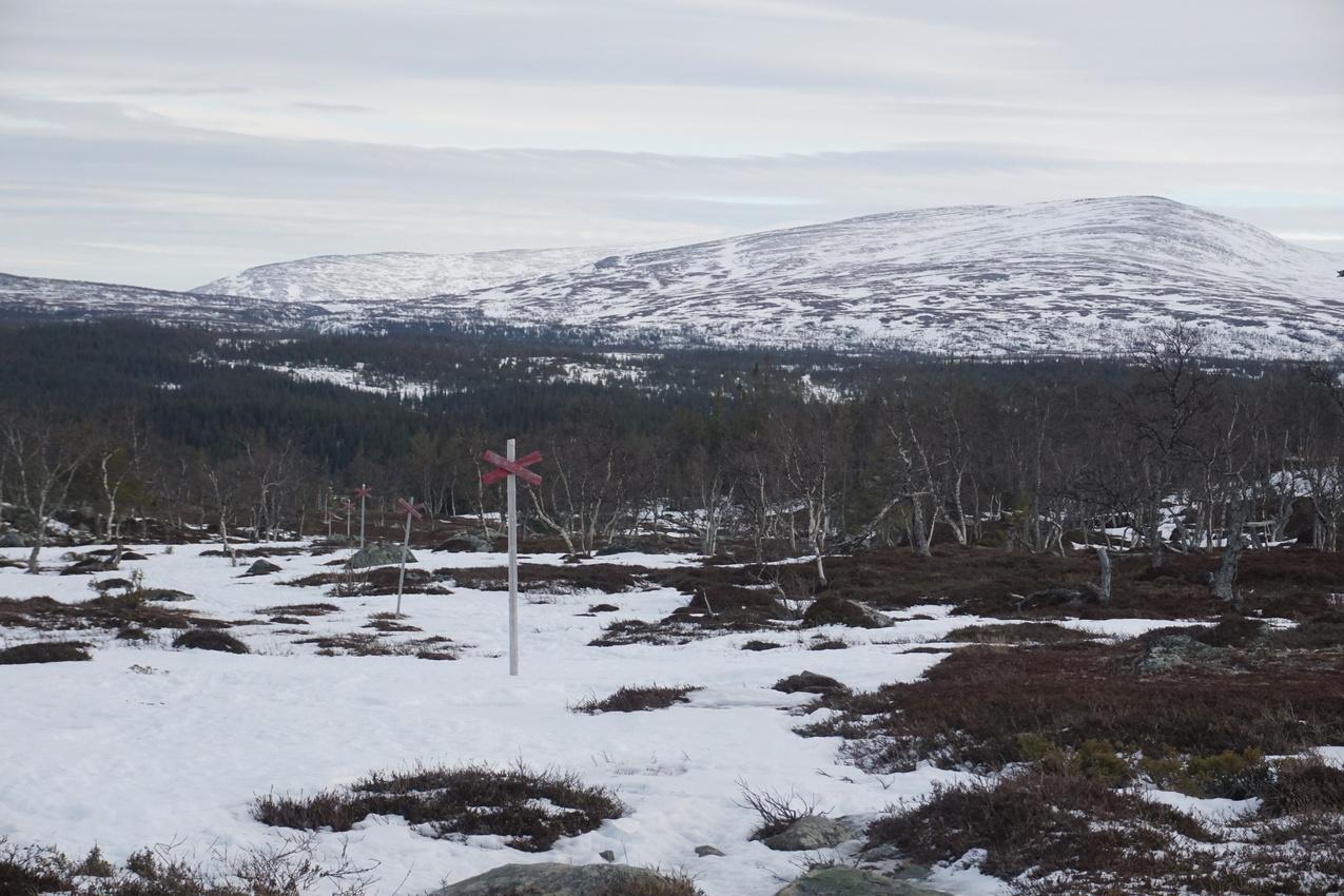 Jämtland: Einsamkeit und Wintersturm images/jaemtland/11.jpg