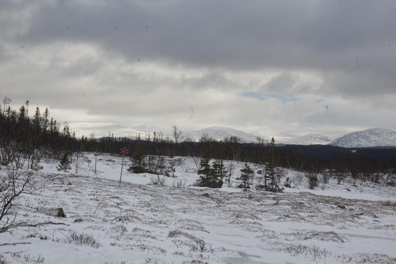 Jämtland: Einsamkeit und Wintersturm images/jaemtland/14.jpg