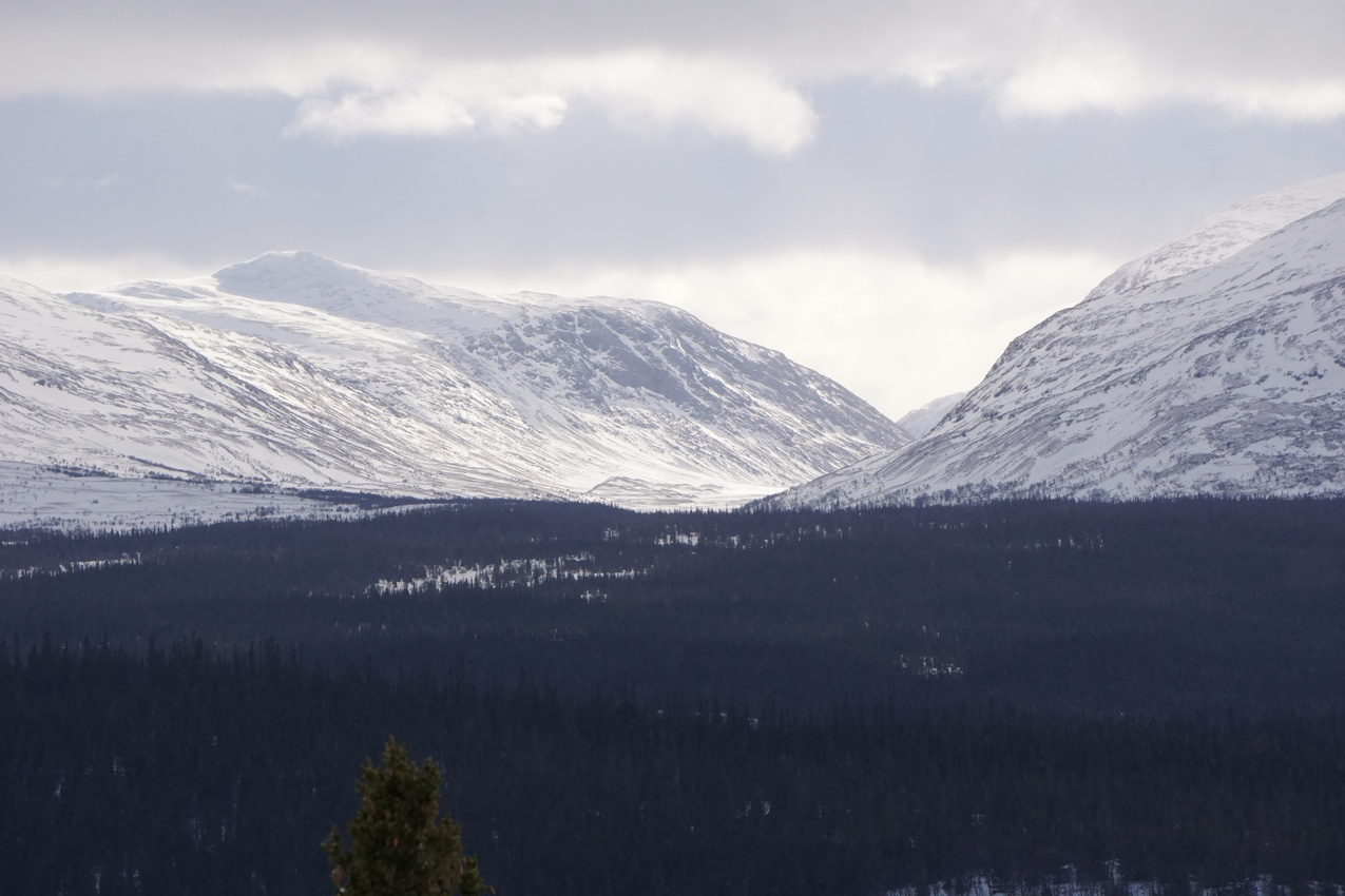 Jämtland: Einsamkeit und Wintersturm images/jaemtland/16.jpg