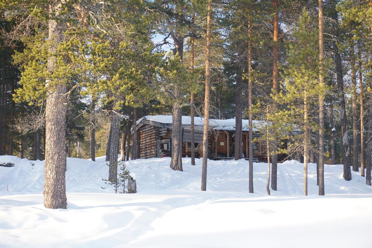 Lappland: Stille Wälder und windige Fjälls images/lapland18/01.jpg