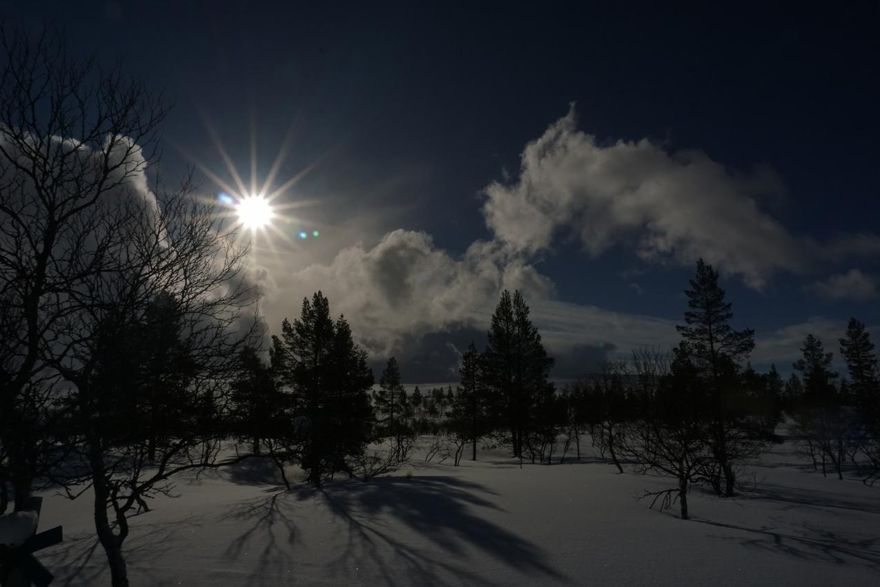 Lappland: Stille Wälder und windige Fjälls images/lapland18/04.jpg