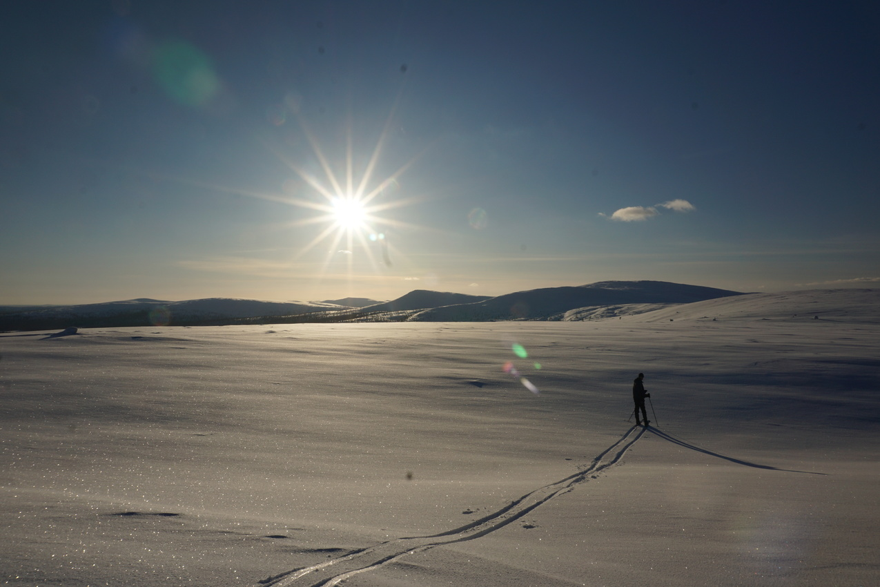 Lappland: Stille Wälder und windige Fjälls images/lapland18/11.jpg