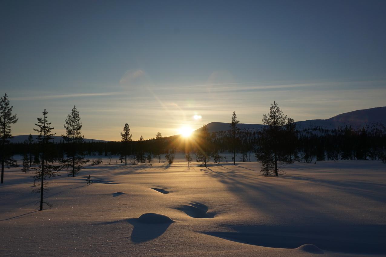 Lappland: Stille Wälder und windige Fjälls images/lapland18/12.jpg