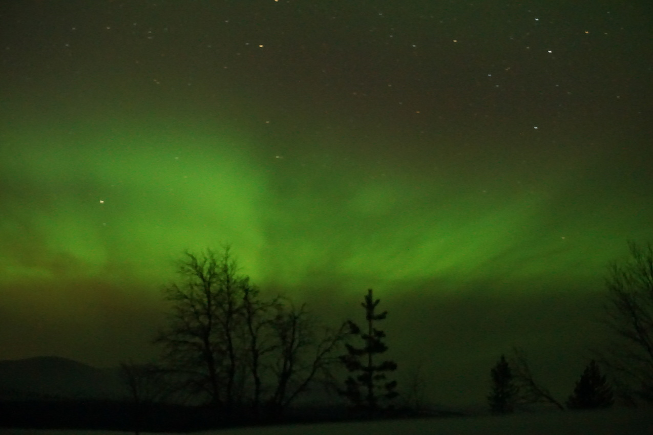 Lappland: Stille Wälder und windige Fjälls images/lapland18/13.jpg