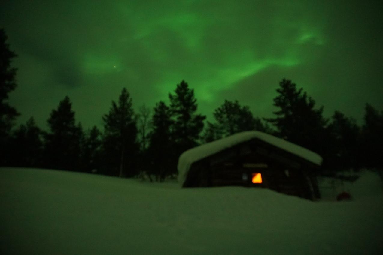 Lappland: Stille Wälder und windige Fjälls images/lapland18/19.jpg
